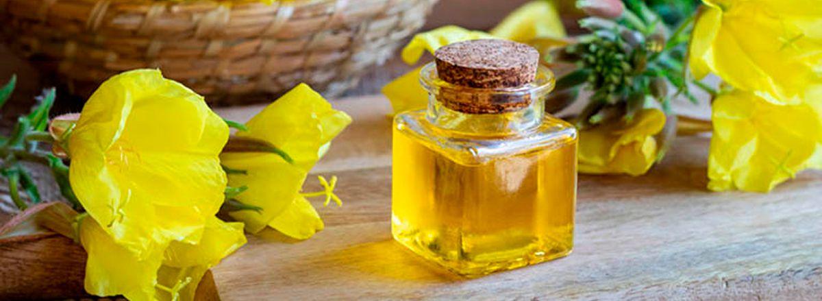 Chắc hẳn nhiều bạn đã nghe qua về tinh dầu hoa anh thảo, vậy bạn đã biết rõ lợi ích của dầu hoa anh thảo chưa? Cùng Sencom tìm hiểu qua bài viết...
