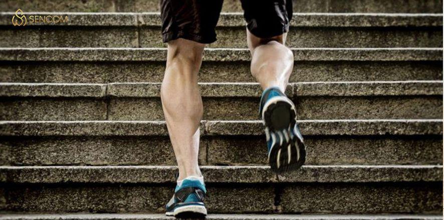 Bắp chân to có cao được không? Cùng Sencom tìm hiểu và giải đáp ngay thắc mắc mà nhiều bạn còn đang gặp phải qua bài viết...