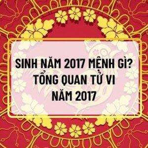 Năm 2017 sẽ tượng trưng cho tài lộc và đường quan lộ rộng mở. Vậy người sinh năm 2017 mệnh gì ? Vận mệnh, con đường công danh và tình duyên của mình như thế...