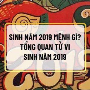 Nếu bạn sinh năm 2019 và muốn biết các vấn đề sinh năm 2019 mệnh gì , tuổi gì, chuyện tình duyên, gia đạo, công danh, tính cách và tài lộc của bản thân thì...