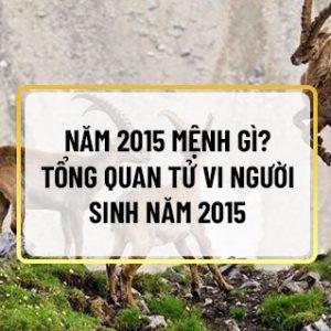 Những người sinh 2015 có tò mò năm 2015 mệnh gì ? Tổng quan tử vi cuộc đời ra sao? Bài viết dưới đây Sencom sẽ giải đáp thắc mắc về năm 2015 mệnh gì? Những...
