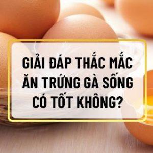 Nếu bạn đang băn khoăn câu hỏi ăn trứng gà sống có tốt không thì hãy cùng Sencom giải đáp chi tiết qua bài viết ngay sau đây nhé...